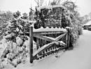 Open Gate. by Gypsyman