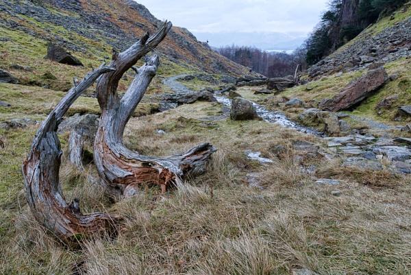 Decaying Waymarker Grange by lonewolf1