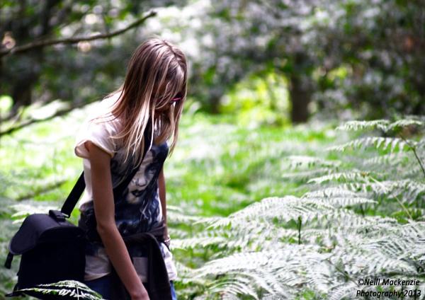 wandering by jimmymack