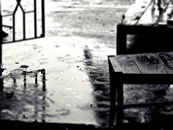 Rainy Abstract by Dibyajit