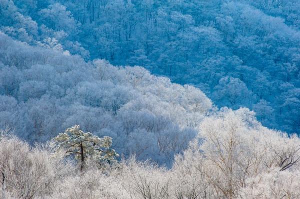 winter image by TeruoAraya