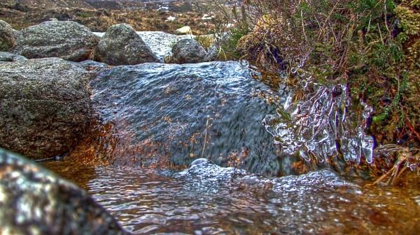 LIVING WATER by ANIMAGEOFIRELAND