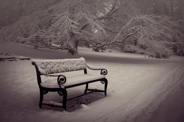 Winter in Oslo by olesyak