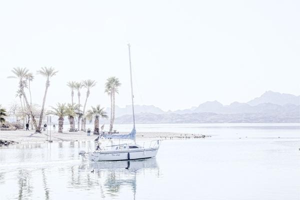 Morning Sail by Daisymaye