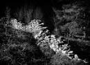 Derelict wall above Llyn Dinas by wynn469