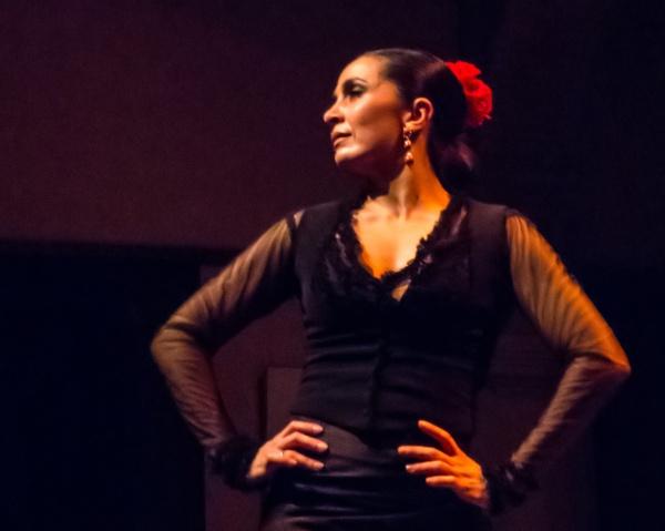 Flamenco Seville by sdixon2380