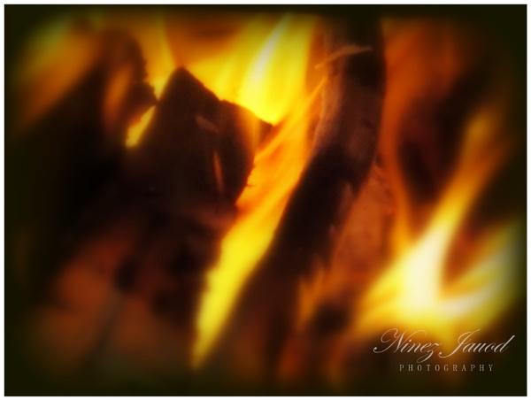 Fire by 9z