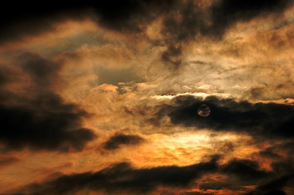 Sun in winter by luminus