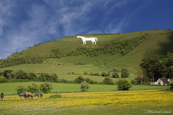 Westbury White Horse Wiltshire by Moonrakerman