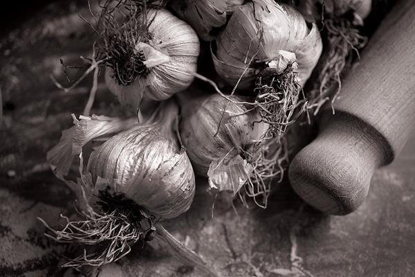 Garlic crusher by tinabolton