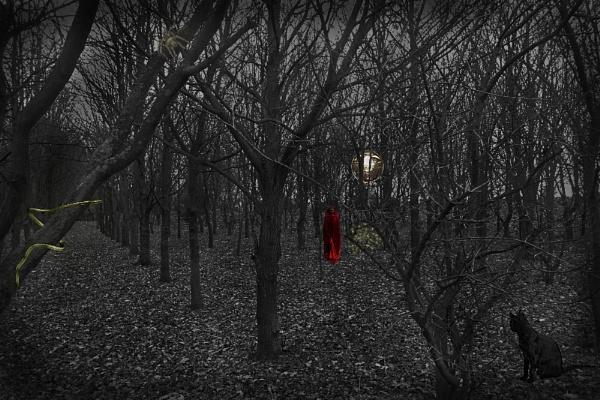 The Seeker part 2 by Alda