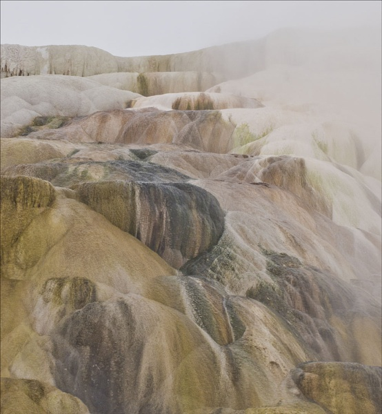 Pastel colours at Mammoth Springs Yellowstone by maggietear
