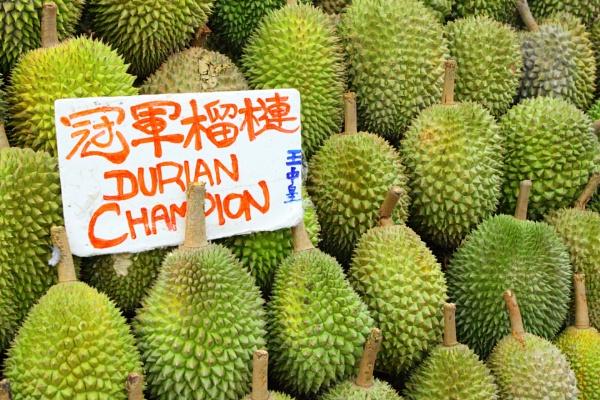 Durian by paulvo