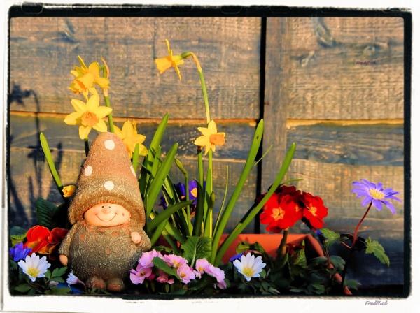 In My Garden by fredhud