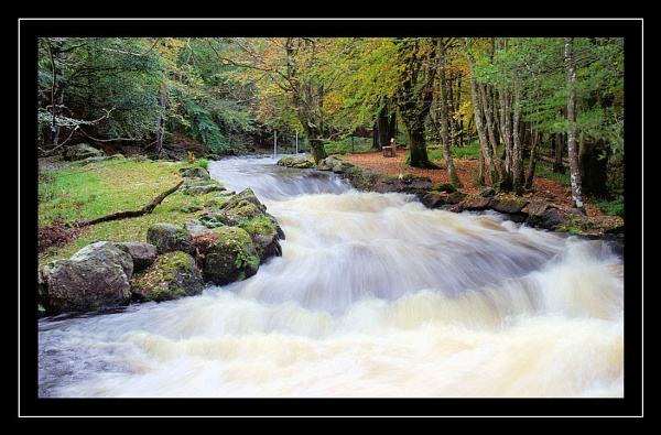 white water by raygregson