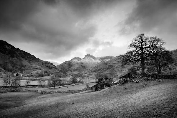 Great Langdale nr Elterwater - (Nr Ambleside), Cumbria. by Esge