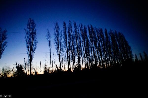 Night Shots XVI by Swarnadip
