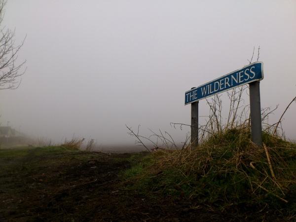 The wilderness by Kittenfox