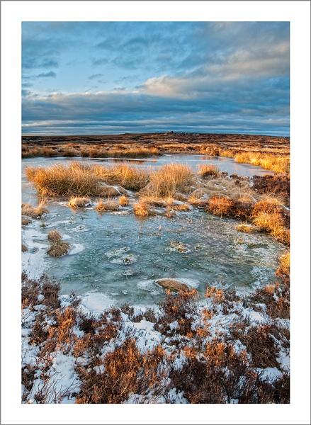 Moorland Bog by petejeff