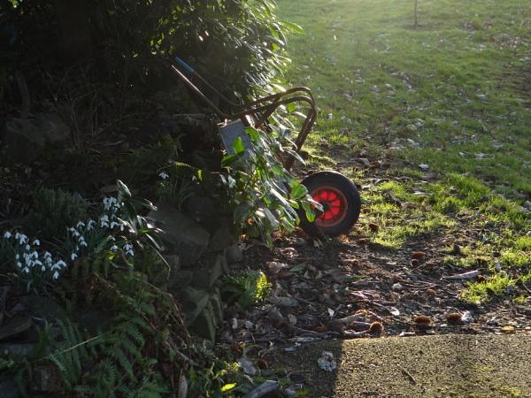 wheelbarrow by bictonbabe12