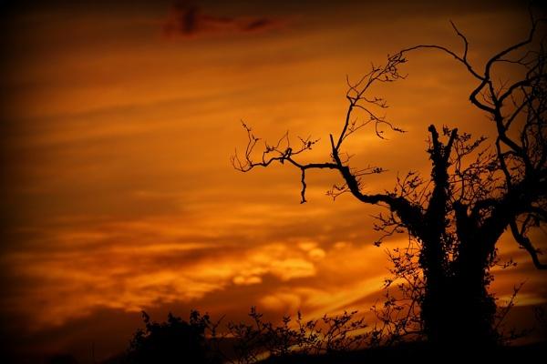 sunset by sirhcelah100