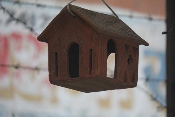Nest House by SHEENUASHISH