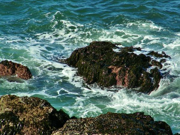Deep Blue Sea.. by lonnieo