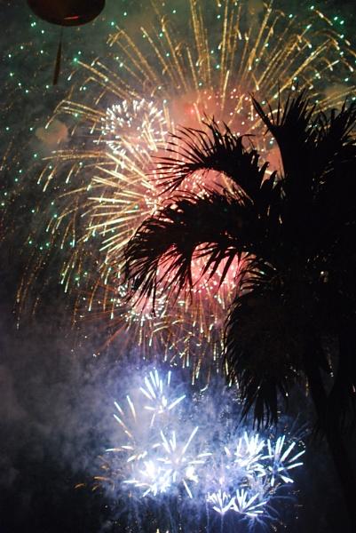 Tet Fireworks by onetrickpony