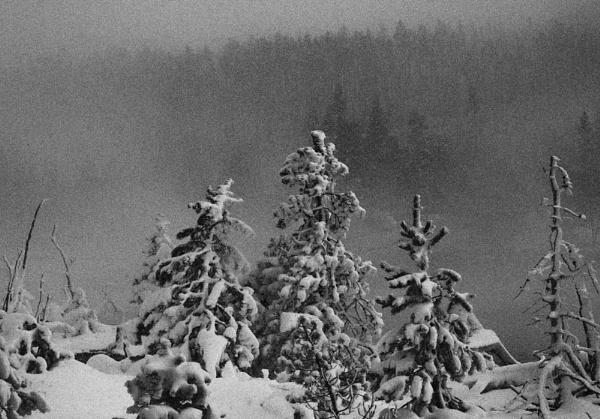 Winter\'s mood by maggietear