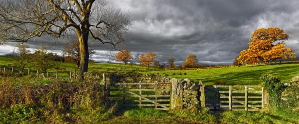 Autumn sunlight by YorkshireSam