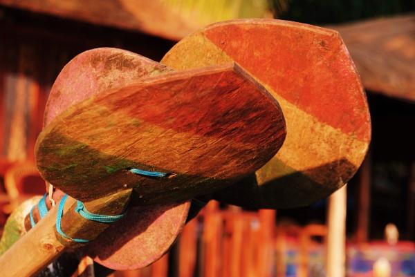 Handmade oars? by Chinga
