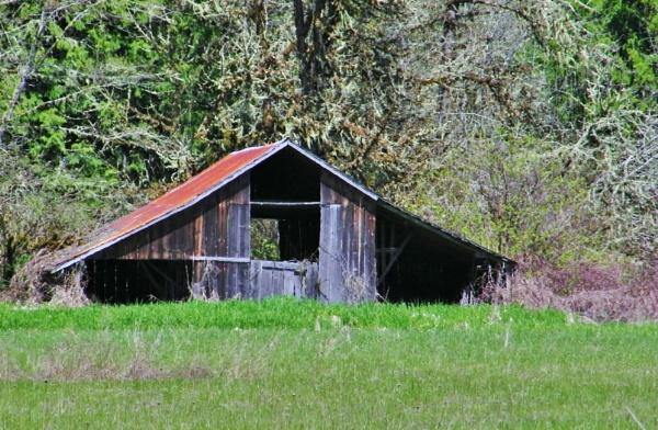 Forgotten Barn by lonnieo