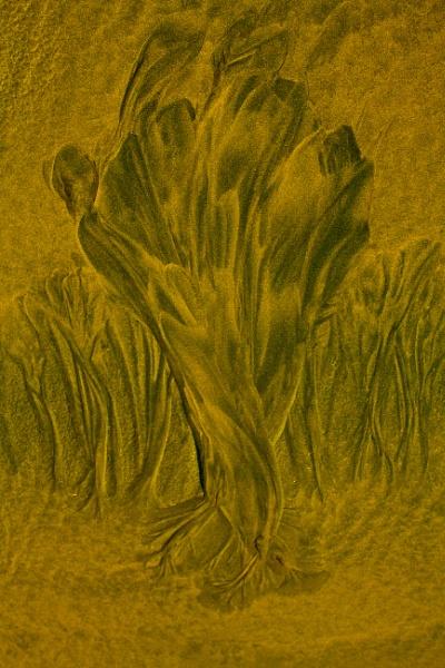 Sandscape by Jallingham