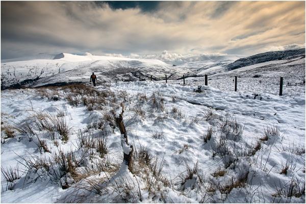 Take A View by Alan_Coles