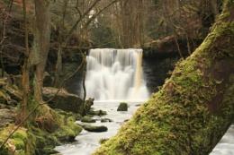 Goitstock falls Bingley