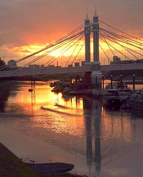The  Albert  Bridge  at  dawn. by pantheonrider