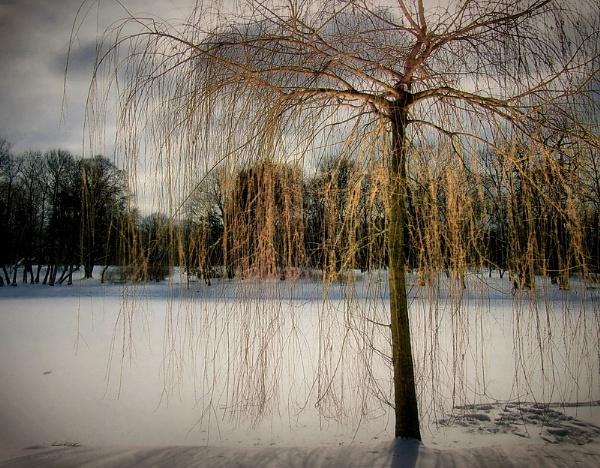 Winter nostalgia vol.2 by atenytom