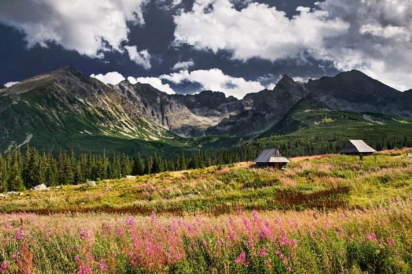 Hala Gasienicowa, Tatra mountains by bart_hoga