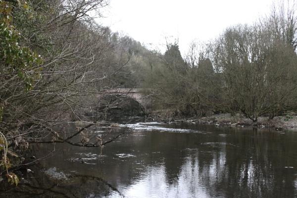 Along the riverbank by StevieRan