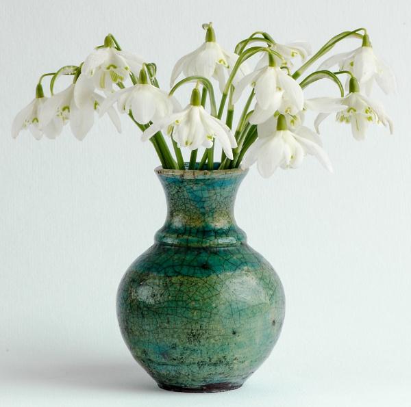 Snowdrops in Raku Vase by flowerpower59