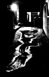 Back Alley Water Leek