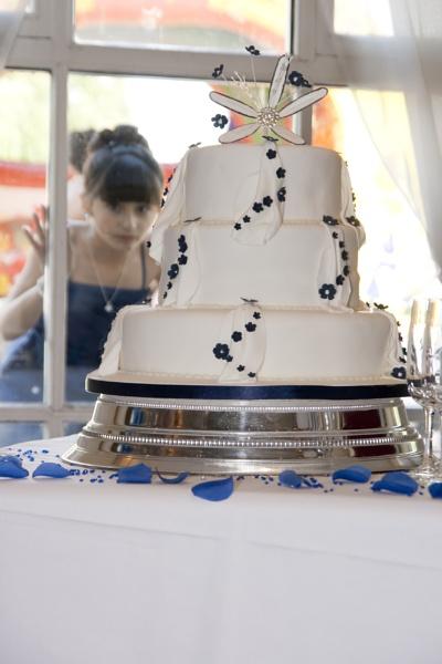 Cake Admirer! by Nigeyboy