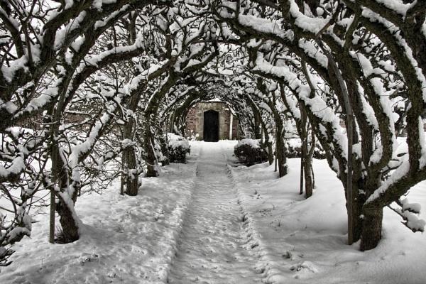 Secret Garden by Mynett