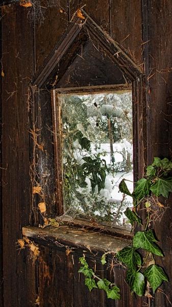 Secret Garden II by Mynett