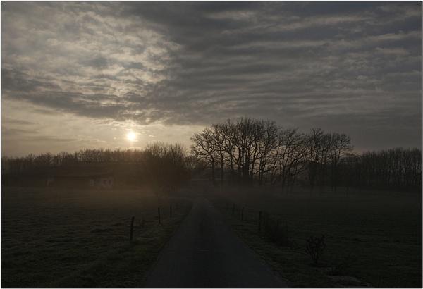 Misty Milk by annettep38