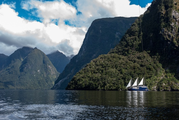 Doubtful Sound & The Fiordland Navigator