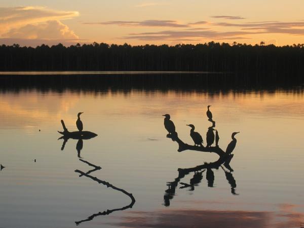 Sunset on Sandoval Lake by handlerstudio