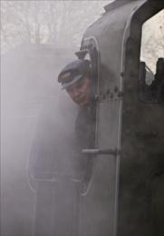 Bluebell Line Driver