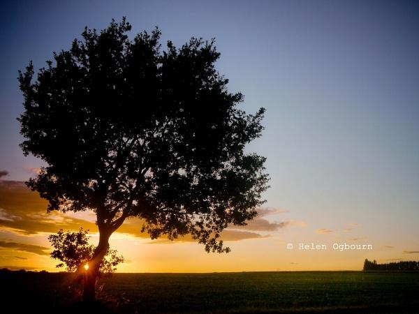 Norfolk Midsummer Sunset