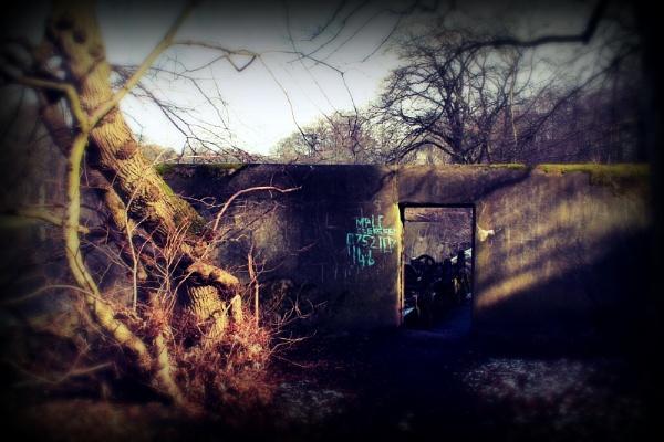 Abandoned by lynzdunk